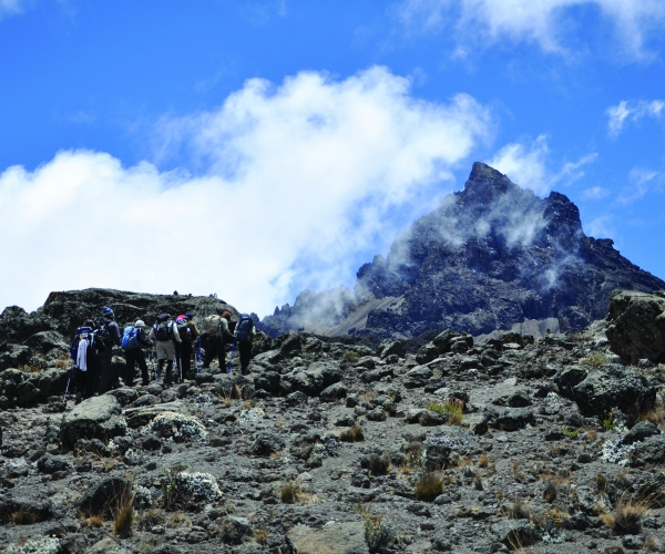 Trek to Summit Kilimanjaro