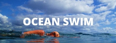 Professionally coached ocean swim training programs